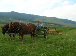 Here I am working with Doc last summer at the beautiful BBar Ranch in Montana