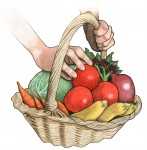 Veg-Basket-Color