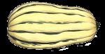 delicatasquash1-1000px