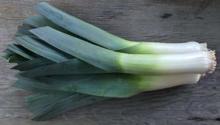 Succulent leeks from 47th Ave Farm